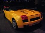 In   Exotic Spotting in Melbourne: Lamborghini Gallardo Spider