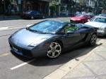 Lambo   Exotic Spotting in Melbourne: Lamborghini Gallardo Spyder