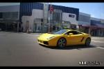 cel Photos Exotic Spotting in Sydney: Lamborghini Gallardo