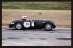 Adel   Classic Adelaide 2008: Jaguar D Type