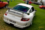 dkabab Photos Porsche Show and Shine 2009:  DSC1806