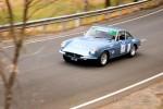 ClassicAdelaide ca08 Australia Classic Adelaide 2008: Ferrari 330