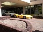 Gold   Spotted: Ferrari F355