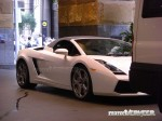 Original   Public: White Lamborghini Gallardo in Sydney ORIGINAL (1024 x 682)